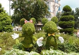 ディズニーセレブレーションホテルウィッシュのトピアリーイメージ写真(画像引用元:Disney)