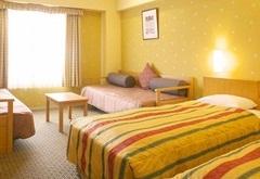 パーム&ファウンテンテラスホテルのスタンダードパーム(画像引用元:楽天トラベル)