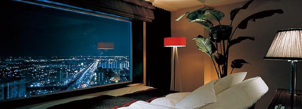 浦安ブライトンホテルのビュー(画像引用元:楽天トラベル)